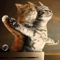 gatos tecido diy venda por atacado-Pintura 5d Pedrinhas Diy Diamante Mosaic Diamond Cross Stitch Kits Broca Full Fabric Diamante Bordados par gatos Rose
