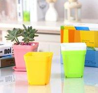 ingrosso vassoio per piante da giardino-DHL Mini Vasi da fiori colorati Vasi da fiori in plastica Vaso da giardino Piante in vaso di piante grasse con vassoio fioriera quadrata giardino decorazioni per la casa