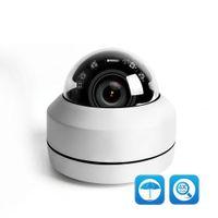 ip kamera ip66 großhandel-2MP 5MP Full HD PTZ IP-Kamera im Freien Mini Speed Dome-Kamera IP Onvif P2P 40 m IR Nachtsicht IP66 wasserdicht POE Optional