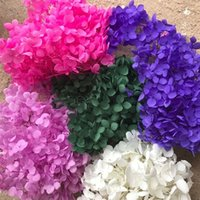 свежие розы сохранились оптовых-20G Сохранилось Цветы калины Macrocephalum, сухой Природные Свежий Навсегда Гортензия Eternelle Rose, DIY Бессмертный цветок Материал T191001
