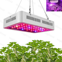 Wholesale plants red flowers resale online - Led Grow Light W W W Full Spectrum Led Grow Tent Covered Green houses Lamp Plant Grow Lamp for Veg Flowering Aluminium DHL