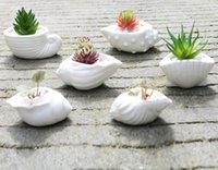 keramik blumen verkauf großhandel-Mini fleischigen Blumentopf Daumen Topf Weiß Shell Conch Ocean Sukkulenten Blumentopf Keramik Heißer Verkauf Freies Verschiffen