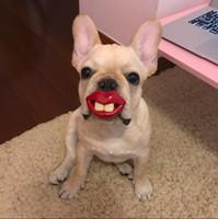 teddybär hundespielzeug großhandel-Pet Welpen lustige Zahn Spielzeug Verfall Requisiten Nippel Schnauzer Gesetz Bekämpfung Teddy Bär Schnuller goldenes Haar Samoyed Hund Spielzeug Hund liefert