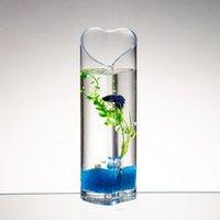 ingrosso vasi di pesce-Vaso di vetro creativo a forma di cuore serbatoio di pesce contenitore idroponica vasi di fiori vaso di fiori per case Goldfish Bowl Bettas Matrimoni