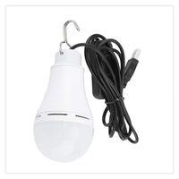 Wholesale usb led bulb 5w resale online - LED Lingt Bulb W USB V Camping Bulb Emergency Light for Outdoor Lighting High Power Glass globe bulbs