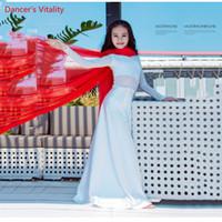 colete indiano venda por atacado-Prática de Dança do ventre Mulheres Traje 2019 Novo Vestido de Babados Indiano Oriental Desempenho de Dança Roupas Vest Vestir Terno