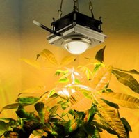 luz coral dimmable venda por atacado-Litgrow Nova COB LEVOU Crescer Luz 85-265 V 50 W Espectro Completo levou Crescer Lâmpada para a Horta Vegetal Interior Hidropônico