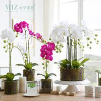 ingrosso dimensioni del vaso da giardino-Miz 1 pezzo fiore artificiale di piccole dimensioni Phalaenopsis piante in vaso per la decorazione domestica piante da giardino Phalaenopsis artificiale