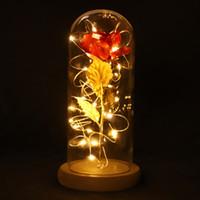 Wholesale rose glasses resale online - 24K Gold Foil Rose Flower Bottle LED Light Beast Flower with Glass Bottle for Home Wedding Decoration Artificial Glow Rose Gift