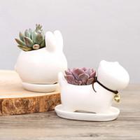 ingrosso ceramic pots white-Cute Animal Potted Flowers Giardinaggio Pottery Planter Pot White Ceramic Flowerpot Decorazione della casa