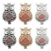 Wholesale aromatherapy animals for sale - Group buy 10pcs Trendy Owl Oyster Pearl Cage Locket Pendants Animal Aromatherapy Essential Oil Diffuser Necklace Locket For DIY Jewelry