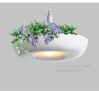 ingrosso vasi da fiore moderni-Babylon Lampada da vaso a sospensione Lampada Paralume Vasi da fiori moderni per erbe e piante grasse in crescita