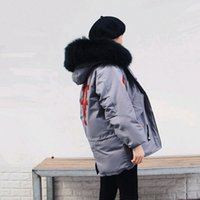 Wholesale green black dog collars resale online - Embroidery white duck down jackets women s natural raccoon dog fur collar fashion winter down coats new autumn
