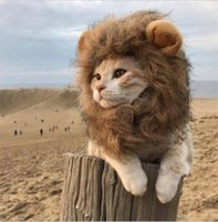 Wholesale headgear costume resale online - Cat Lion Mane Pet Costume headgear Hair Wig for Dogs Cats Pets Teddy cat Garfield pet hat wig ornament Halloween Christmas Party Gift