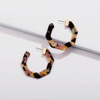 Wholesale acrylic earrings patterns resale online - Fashion Acrylic Earrings Womens Leopard Grain Pattern Big Hook Drop Dangle Earring Jewelry For Women Girl Gift