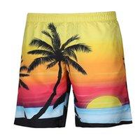 pantalones de voleibol al por mayor-Pantalones de playa, ardilla de coco, impresión digital animal, deportes de playa, voleibol, pantalones cortos para nadar, gran tamaño