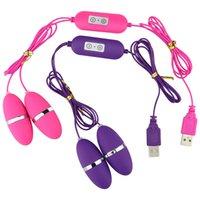 titreşimli yumurta çift vibratör toptan satış-USB Sürücü Sex Masaj Kablolu Çift Yumurta Vibratör 12 Hız Ayarlanabilir Bullet Titreşimli Yumurta Klitoris Stimülatör Atlama Yumurta geliştirin