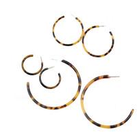 çeşitli tipler toptan satış-Çeşitli Boyutları Retro C-tipi Akrilik Leopar Baskı Hoop Küpeler Boho Asetik Asit Pendientes Kadınlar Trendy Takı Bijoux Oorbellen