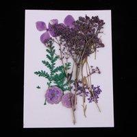 lesezeichen verlassen großhandel-Natürliche echte Presse verlässt gepresste echte getrocknete Blumen trockene Blätter für DIY Scrapbooking Kunsthandwerk-Lesezeichen-Karte, die Materialien herstellt