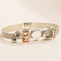 ingrosso pan european-Autentici 925 Sterling Silver Reflexions Clip Charms Beads Fits Original European Pan Reflexions Braccialetti