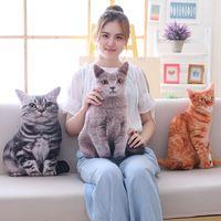 Wholesale anime cat pillows for sale - Group buy 1pc cm Simulation Plush Cat Pillows Soft Stuffed Animals Cushion Sofa Decor Cartoon Plush Toys for Children Kids Gift