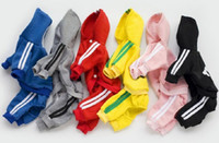 Wholesale dhl clothes for sale - Group buy DHL designer pet dog clothes Winter Warm Pet Dog Jacket Coat Puppy Clothing Hoodies For Small Medium Dogs Puppy Yorkshire Outfit