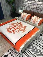 оранжевые постельные принадлежности оптовых-2019 Постельное белье из теплого оранжево-оранжевого цвета. H-принт с логотипом, зима, теплый, хрустальный, четырехкомпонентный, двухсторонний бархат и плюшевые пододеяльники DHL FREE