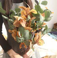 künstliche blattdekorationen großhandel-Eukalyptus Blätter Geld Blatt Blätter Kunstblume Eukalyptus Hauptdekoration Pflanze Wand Kunstblume Simulation Blätter