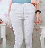 ingrosso gambali cerniera a ginocchio-Le ghette delle signore dell'ufficio OL leggings di modo delle ghette corte di estate di modo casuale delle donne leggings del ginocchio