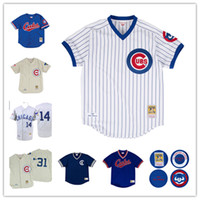 bankalar forması toptan satış-Chicago Ryne Sandberg Andre Dawson 1987 Otantik Jersey Yavrularını 1996 Ron Santo 1969 Ernie Bankalar Beyzbol Formaları
