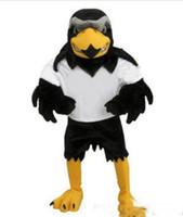 kartal maskot kostüm özel yapılmış toptan satış-Sıcak satış Yeni Custom made Mavi Falcon Maskot Kostüm Karikatür Karakter Kartal Kuş Mascotte Mascota Kıyafet Suit Fantezi Elbise Suit