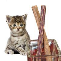 ingrosso dente molare-60pcs denti per la pulizia del gatto catnip naturale pet cat molare dentifricio stick matatabi actinidia frutta silvervine snack gatto bastoni giocattolo