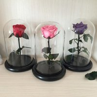 свежие розы сохранились оптовых-Оптово-Маленький принц Стеклянная крышка Свежая консервированная роза Цветок Бессмертные Разноцветные розы для девочки День Святого Валентина Свадебные подарки