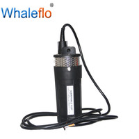Wholesale submersible mini pump dc for sale - Group buy Whaleflo V V DC LPM Mini Deep Well Submersible Solar Water Pump for Irrigation Deep Well Animal Water Supply