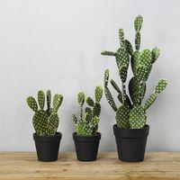 Wholesale decor shops for sale - Group buy 2PCS Artificial Tropical Cactus Plant Green Simulation Plant Decoration Shop Window Table Accessories Wedding Home Office Decor