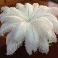 Wholesale natural feather ostrich plumes for sale - Group buy 10pcs White Natural plume cm cm cm cm cm cm plumage Ostrich Feathers Wedding Birthday Party Christmas Decoration