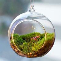 ingrosso paesaggio matrimonio-Terrarium Ball Globe Shape Clear Hanging Vaso di vetro Piante da fiore Contenitore Ornament Micro Paesaggio DIY Wedding Home Decor