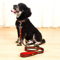 Wholesale pet car safety for sale - Group buy Embroidery Animal Dog Collar Flashers Safety Collar Pet Leashes Fashion Teddy Schnauzer Adjustable Strap Vest Collar Car Seat Belts