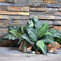 Wholesale table leafs resale online - 10 Heads Zebra Leaf Artificial Plants Fake Fern Green Leaf Tree Plant for Home Garden Decorations Table Decorative Plant
