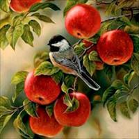 yağlama boyaları numaralandırma toptan satış-Meyve Elmas Boyama Yağlıboya Resimler Rakamlarla Poster Modüler Resimler Modern Duvar Panelleri Ev Dekor