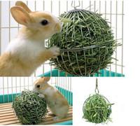 domuz tavşan oyuncak toptan satış-Küre Besleme Dağıtın Egzersiz Asılı Hay Topu Gine Domuz Hamster Tavşan Pet Oyuncak