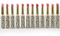 Wholesale bright lipsticks resale online - Hot Sale Long lasting Leopard Lipstick Moisturize Bright Nude Lip Gloss Pencil Balm set