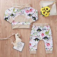 Wholesale dinosaur baby clothes for sale - Group buy Baby Boy Clothing Set Letter Dinosaur Printed Hooded Tops Pants Two Piece Set Kids Leisure Clothes Boys Boys Girl Clothes T