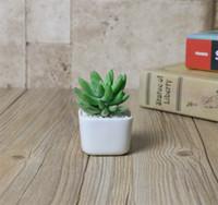 ceramica para decoraciones al por mayor-Las suculentas plantas carnosas bote blanco cerámica color manera de la simplicidad Mini Maceta decoración de la oficina de escritorio nueva llegada 1 78fy E1