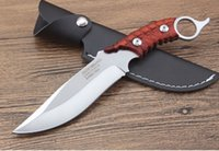 Wholesale eagles claw for sale - Group buy Eagle claw outdoor inch straight fixed blade knife tactical self defense edc knife collection hunting knives xmas gift a2305