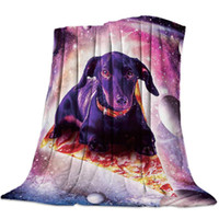 Wholesale pizza lights for sale - Group buy Soft Warm Coral Fleece Blanket Space Dachshund Sitting On Pizza Winter Sheet Bedspread Sofa Throw Light Thin Flannel Blankets