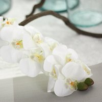 Wholesale artificial white orchids resale online - Fashion New Arrival cm Artificial Butterfly Orchid Flower PU Latex Material Real Touch Phalaenopsis Wedding Decoration Flores