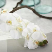 çiçek kelebek pu toptan satış-Moda Yeni Varış 72 cm Yapay Kelebek Orkide Çiçek PU Lateks Malzeme Gerçek Dokunmatik Phalaenopsis Düğün Dekorasyon Flores