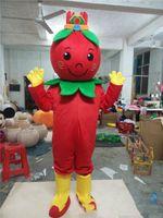 ingrosso cinese vestito di natale-2018 di alta qualità frutta wolfberry del costume della mascotte di Halloween di Natale rossa cinese wolfberry frutta Carnival Dress Full Body Props Outfit