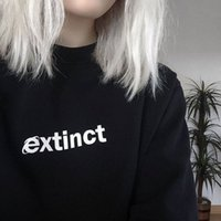 интернет черный оптовых-Pudo YF вымерший толстовка 90-х Internet Explorer Vaporwave Tumblr вдохновил свитер бледно-пастельные гранж эстетический черный